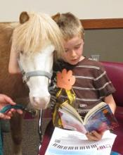 boy reading to horse picture 1