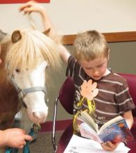 boy reading to horse picture 3